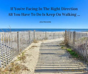 If Your Facing In The Right DirectionAll You Have To Do Is Keep On Walking ... (1)